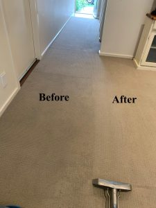 steam cleaning process in Sydney