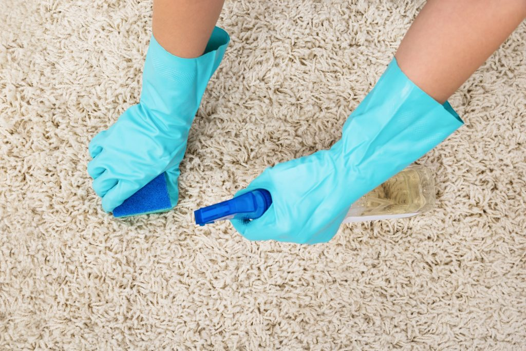 professional rug cleaning process