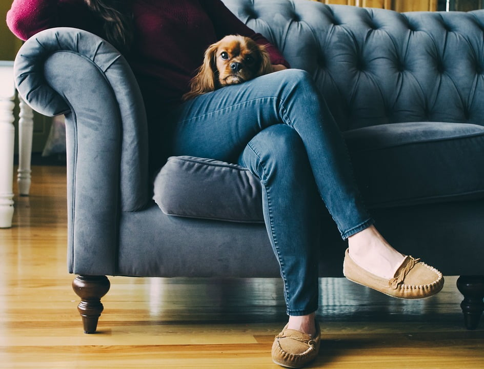 Most Effective Sofa Cleaning Methods That Professionals Use